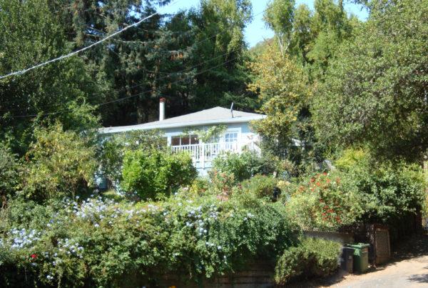 377 Scenic Fairfax CA real estate